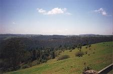 Lamington/Tamborine National Parks